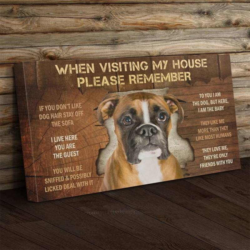 Boxer Visiting Poster Canvas 312320945