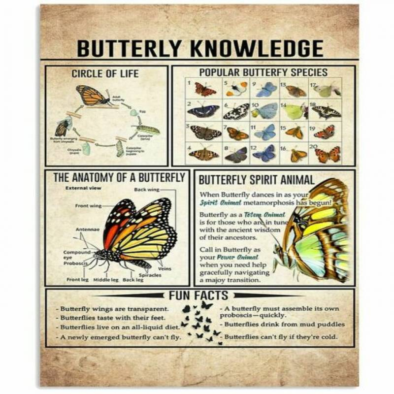 homesweetquilt – Satin Poster Butterfly Knowledge Shirt Poster-Portrait no Frame, hp0105