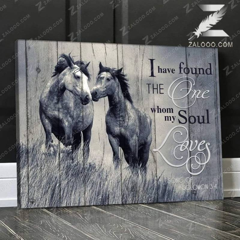 I Found Horse Poster Canvas 312320836