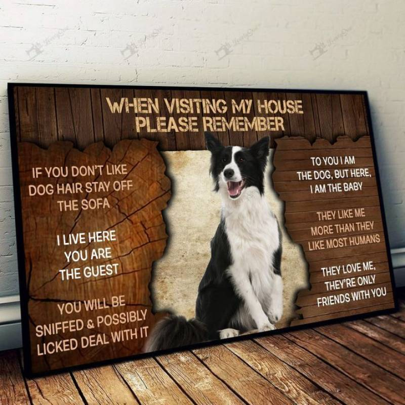 Border collie please remember when visiting our house Poster Canvas 5632203014