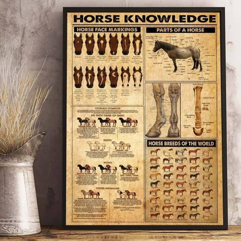 Horse knowledge horse breeds of the world  poster  t shirt hoodie sweater  canvas