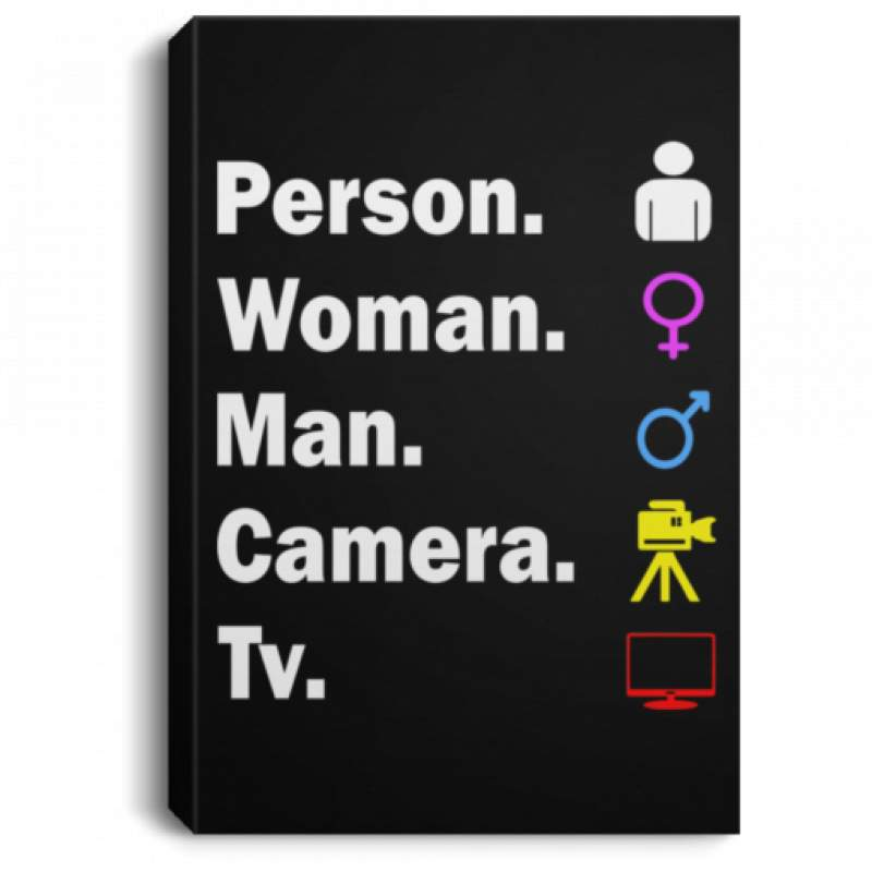 Person Woman Man Camera Tv poster, canvas