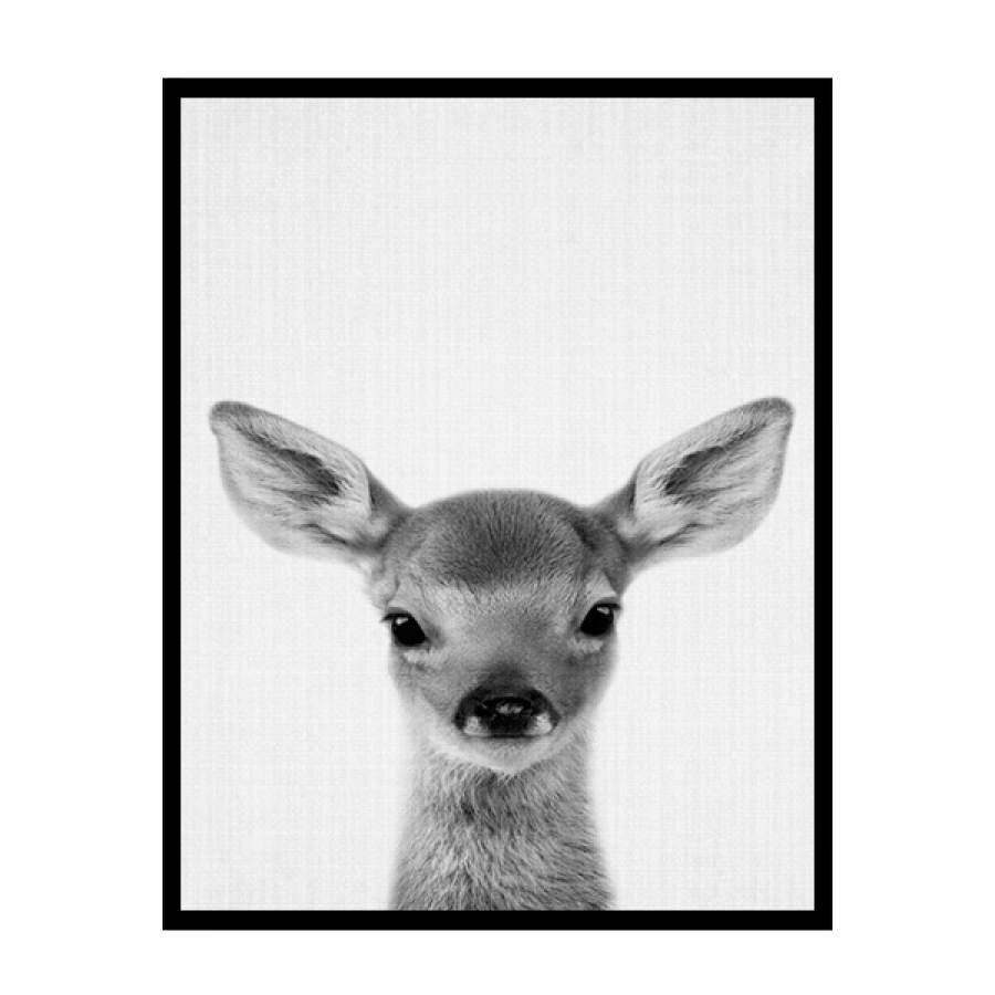 B&W Deer Poster