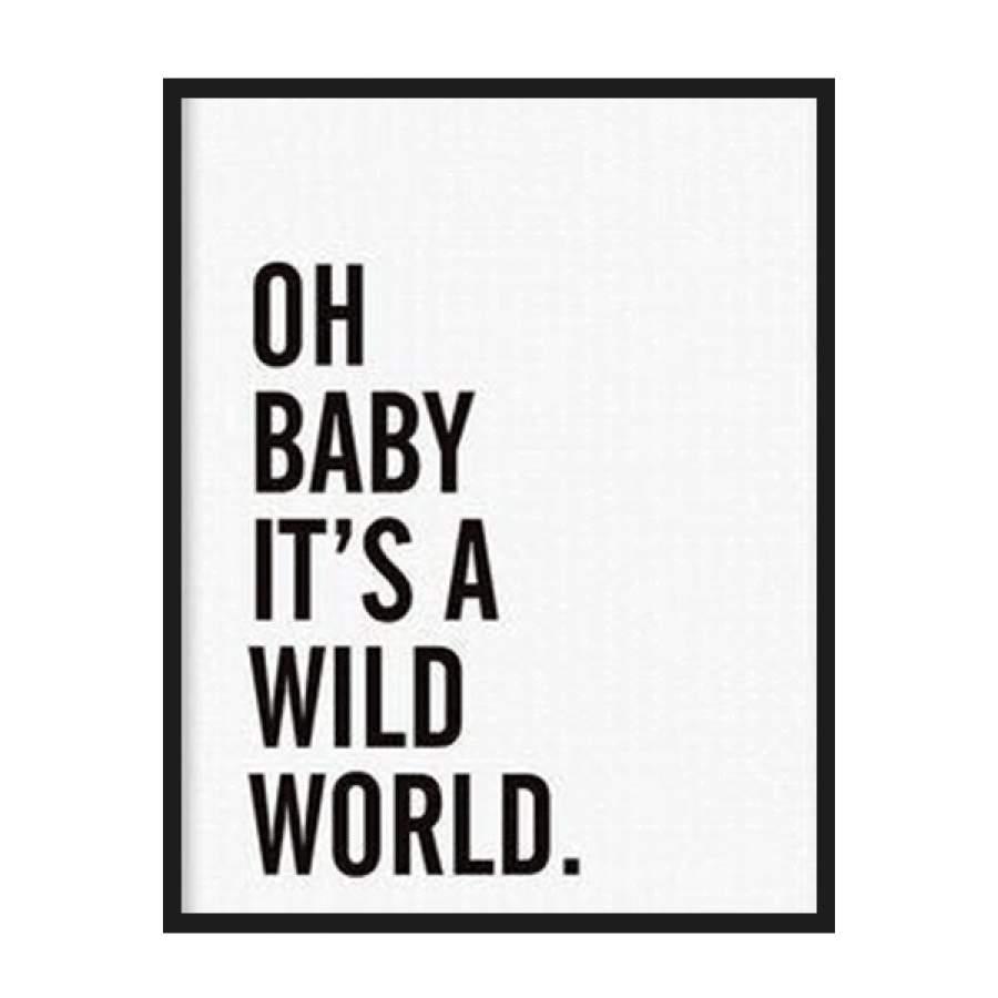 A Wild World Poster