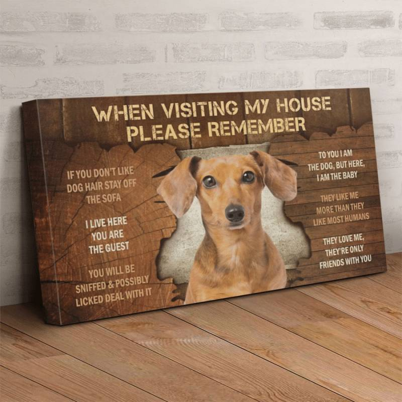 Dachshund Visiting Poster Canvas 312320954
