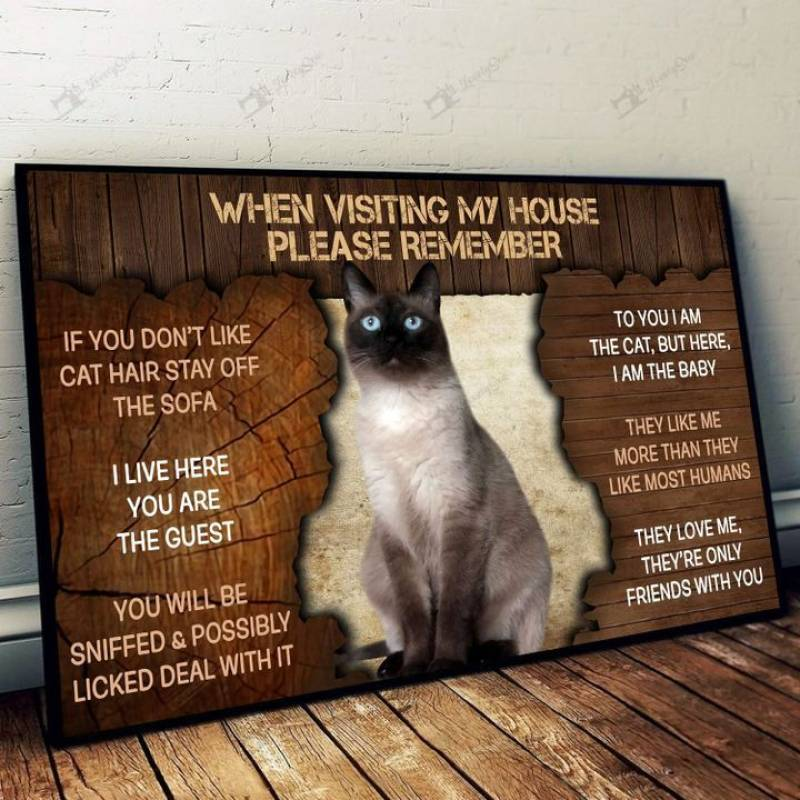 Siamese cat please remember when visiting our house  Poster Canvas 5632203027
