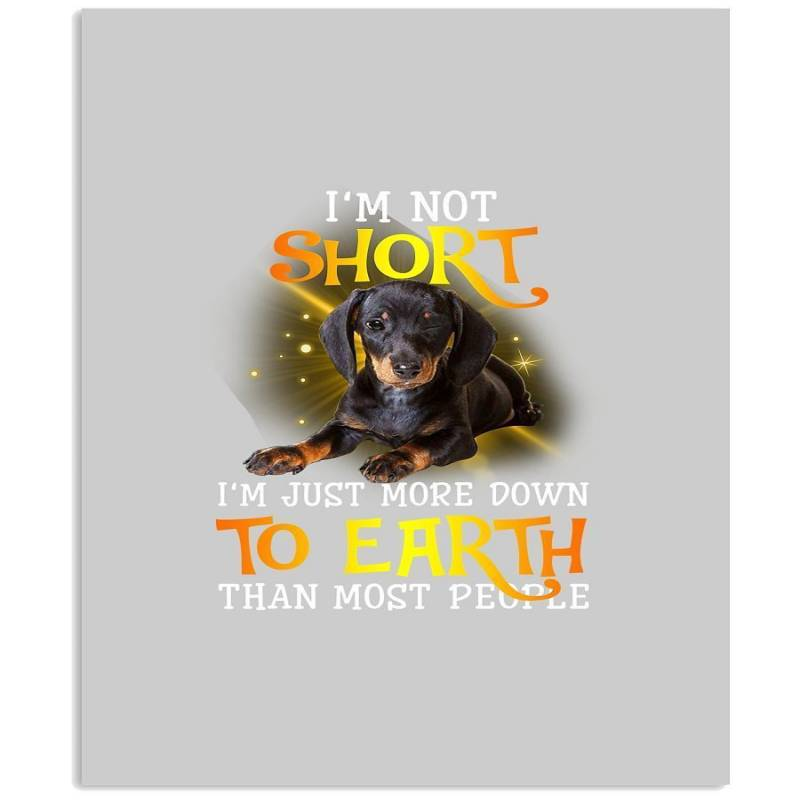 Dachshund Not Short Just Down To Earth Black T-shirt Vertical Poster