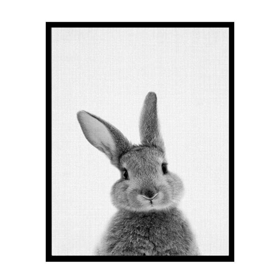 B&W Bunny Front Poster